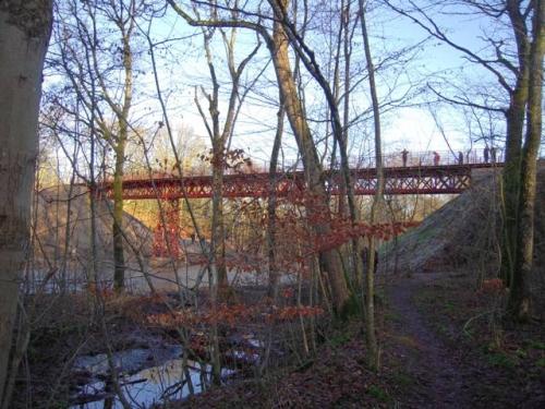 2015 0104 Genfundne bro (14)