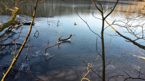 2018 - Is på Bygholm sø