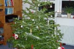 Juletræet i Dagnæsparken