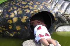 Onkel Niklas kravler ind i en skildpadde