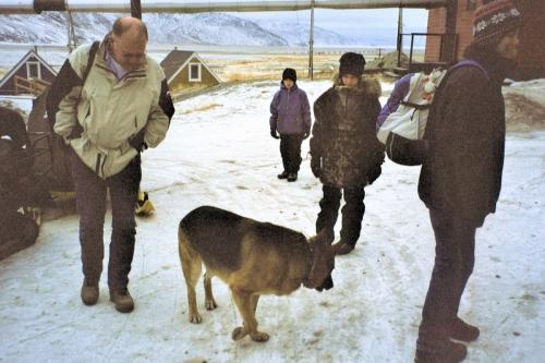 2003 marts Grønland (017)