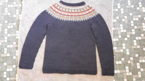 2016 - Tildes trøje