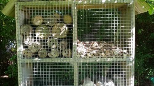 2016 0908 Insekthotel Bygholm (3)